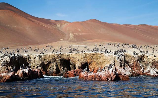 Pisco Province, Peru