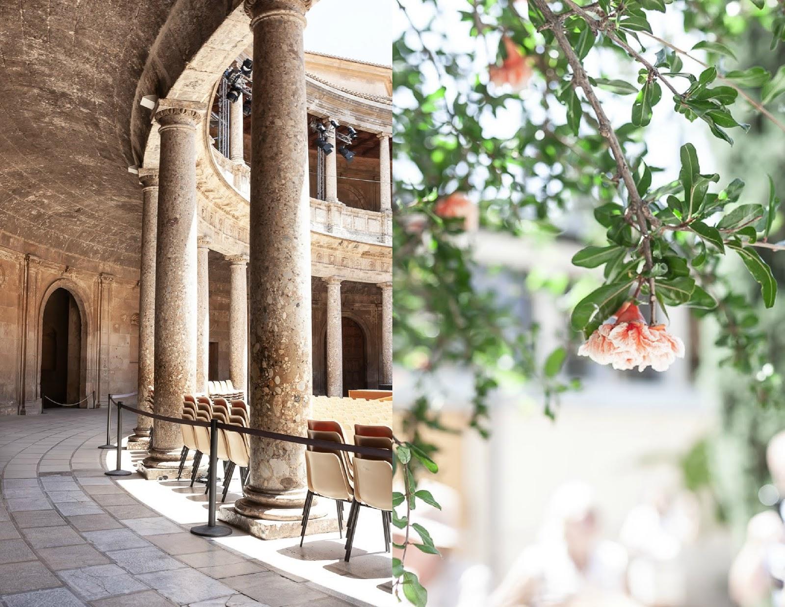 Pomegranate of Alhambra