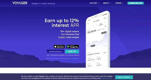 Screenshot Webiste Voyager Token (VGX) Cryptocurrency