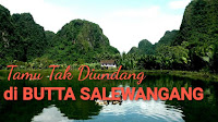Tamu Tak Diundang Di Butta Salewangang - Kisah - Ardiz Info
