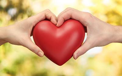 Carilah Yang Pernah Kecewa Untuk Dicintai