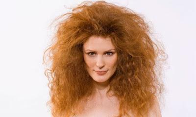 estarrufat, pel, pelo encrespado, rígit, rigid, pèl, cabell, cabello