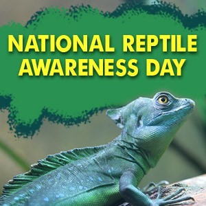National Reptile Awareness Day Wishes Images