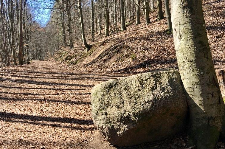 Felsblock am Wanderweg