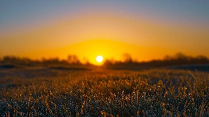 Papel de Parede Celular Pôr do Sol no Campo