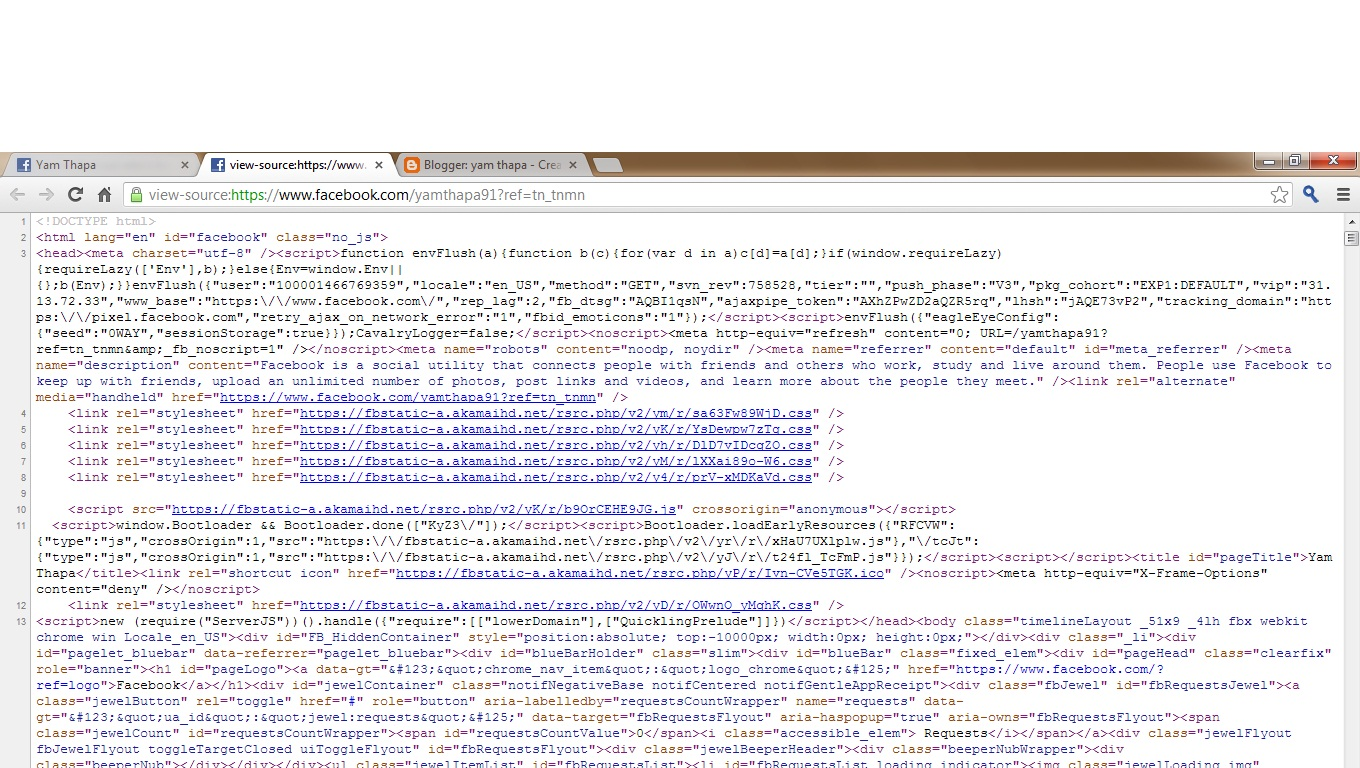 yam thapa how to out who s looking at your profile on facebook then a new tab will be open some html javascript coding