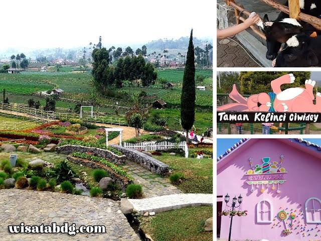 Happy Farm Ciwidey, Wisata Edukasi dan Wisata Selfie di Bandung Selatan