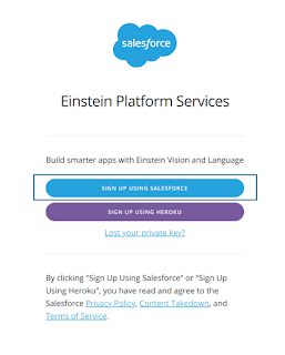 Sign Up Einstein Vision