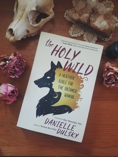 Book Review: The Holy Wild by Danielle Dulsky
