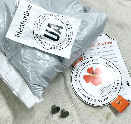 contents of the nasturtium grow kit