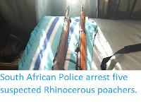 https://sciencythoughts.blogspot.com/2019/10/south-african-police-arrest-five.html
