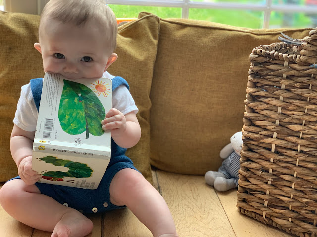baby looking to camera and chewing a book