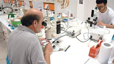 Eγκαινιάζεται το Εργαστήριο Αρχαίου DNA στο ΙΤΕ
