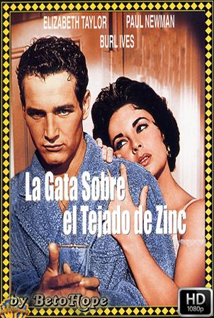 La Gata Sobre El Tejado De Zinc [1080p] [Latino-Ingles] [MEGA]