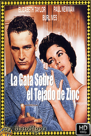 La Gata Sobre El Tejado De Zinc [1958] [Latino-Ingles] HD 1080P [Google Drive] GloboTV