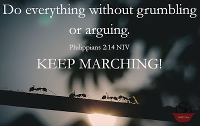"""Ants marching single file on a log with the sun coming up underneath. Above them is the verse. Underneath it says, """"Keep Marching."""""""