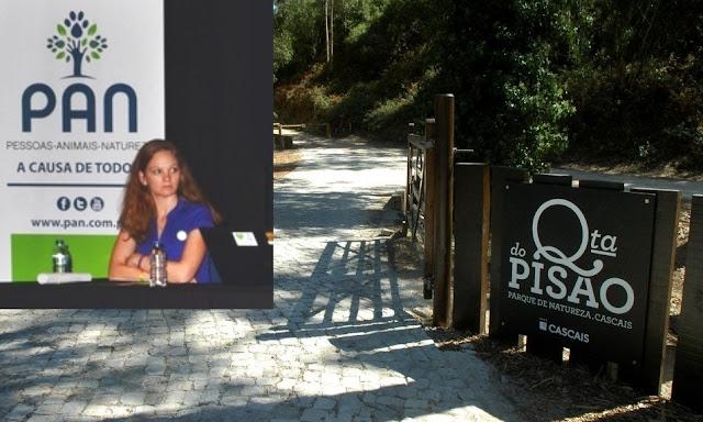 PAN quer Quinta do Pisão como projeto piloto para ouvir menores vítimas de violência fora dos tribunais
