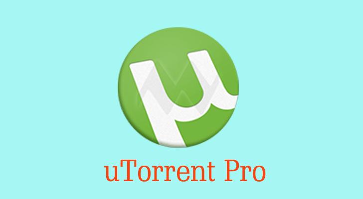 utorrent pro for windows