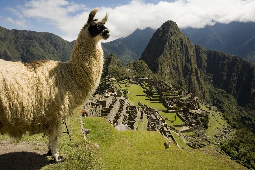 PERÚ PREMIOS WORLD TRAVEL AWARDS 2019 2