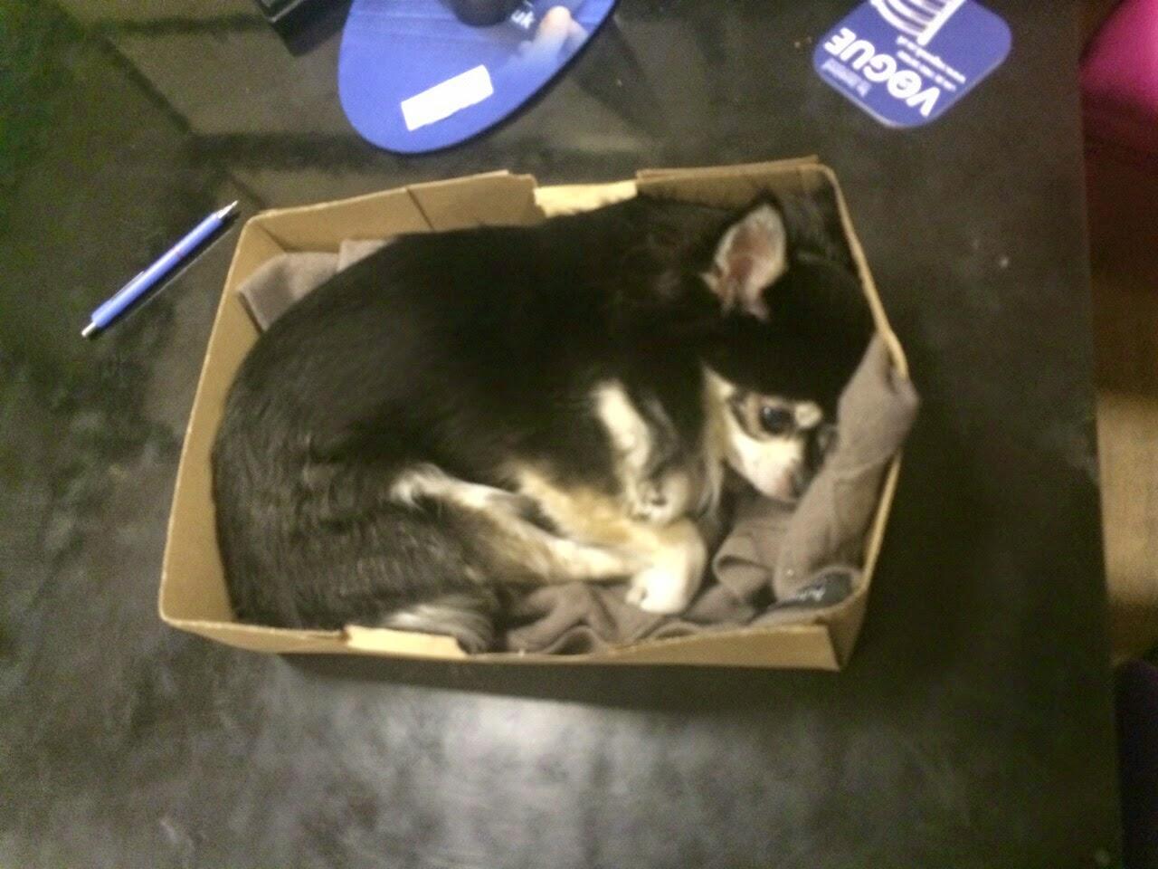 Cosy box