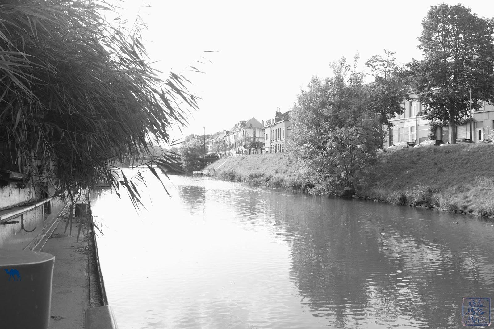 Le Chameau Bleu - Canal - EcoHostel - Gand Hotel à Gand