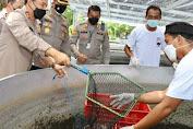 Wujudkan Ketahanan Pangan Kampung Tangguh, Kapolda Jateng Panen Ikan di Sukoharjo