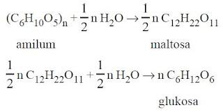 Reaksi Hidrolis