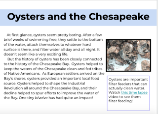 https://www.teacherspayteachers.com/Product/Informational-Text-for-Distance-Learning-Oysters-and-the-Chesapeake-5531162