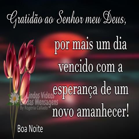 Gratidão ao Senhor meu Deus,  por mais um dia  vencido com a  esperança de um  novo amanhecer!  Boa Noite!