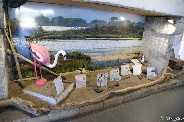 Interno del Museo del Sale delle Saline di Aigues Mortes