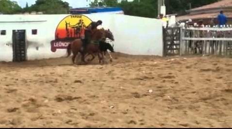 X VAQUEJADA DO PARQUE LEÔNCIO JOSÉ DE FREITAS ACONTECE NESTE FIM DE SEMANA EM RAFAEL FERNANDES