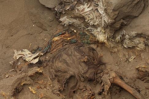 Des archéologues découvrent une coiffe et un tabard de la culture Chimú au Pérou