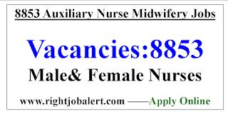 8853 ANM Nursing Jobs - Government of Bihar