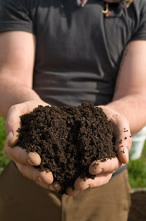 A handful of delicious compost.