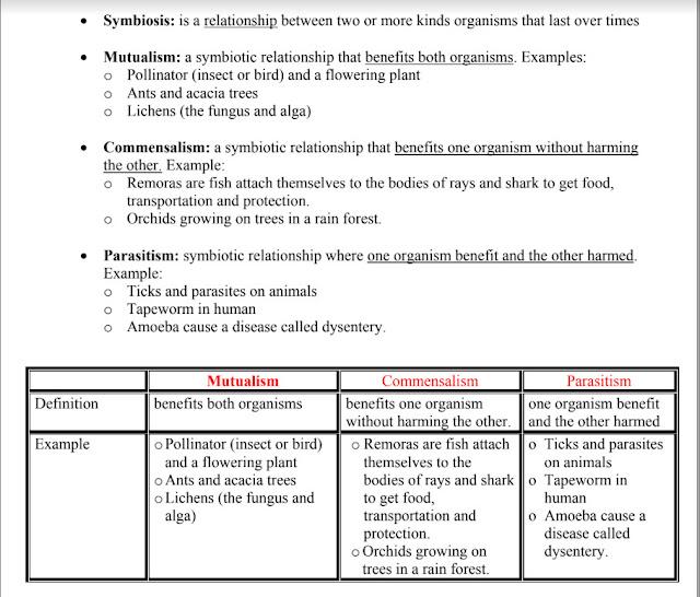 ورق عمل الدرس الثالث العلاقات في النظم البيئية علوم منهج إنجليزي صف خامس فصل أول