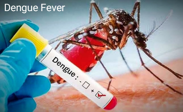 Contagious disease Dengue Fever.