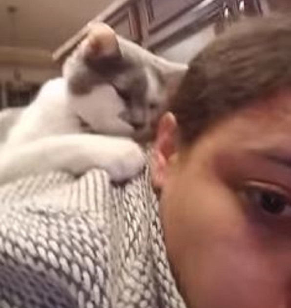 This Affectionate Cat Won't Let His Human Leave For Work