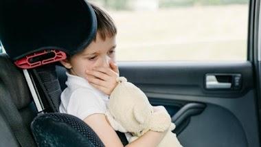 Top 20 cách khử mùi ô tô cực hiệu quả