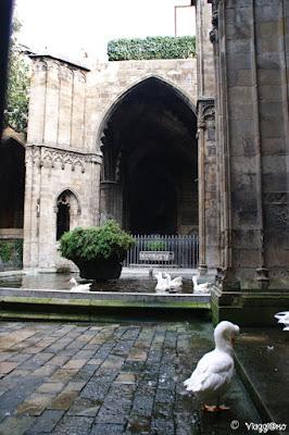 Interno del chiostro della Cattedrale de la Seu nel quartiere Gotic