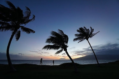 lagu rayuan pulau kelapa menggambarkan keelokan alam nusantara