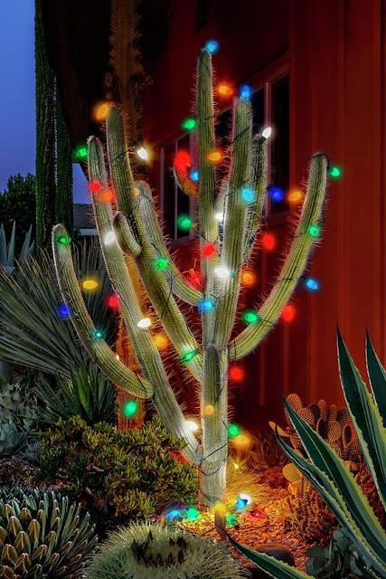 cactus, Cactus Christmas Tree, Christmas Tree, ornaments, holiday tree, holiday, holiday decor