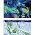 Waspada Potensi Hujan Lebat di Bebarapa Wilayah Indonesia