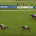 Newmarket: Magna Grecia trionfa nelle 2000 Ghinee! Decima nella Classica per Aidan O'Brien