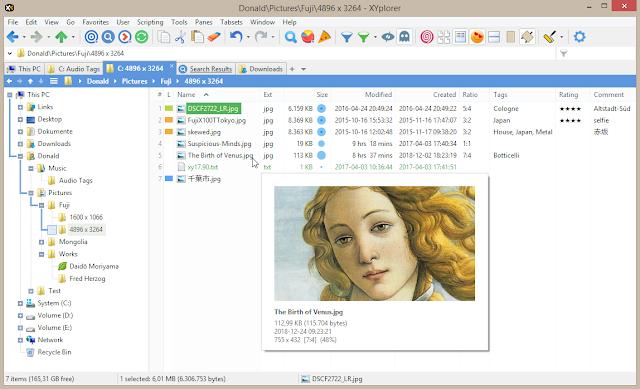 Screenshot XYplorer Pro 20.80.0500 Full Version