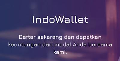 saldo dana gratis indowallet.net