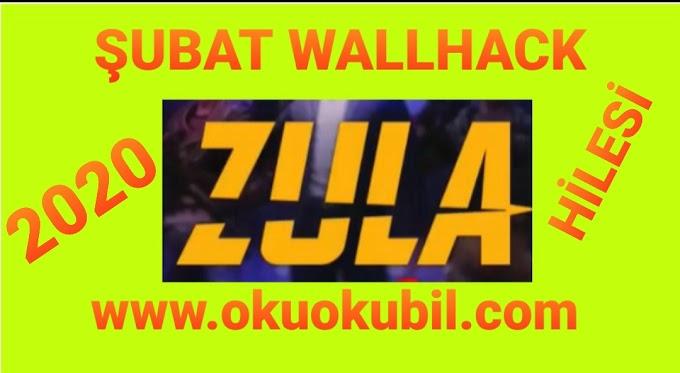 Zula ŞUBAT Wallhack Ve Chams Hack Hilesi Bansız Fixsiz İndir 2020