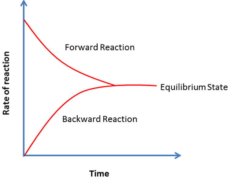 Diagrama del estado de equilibrio
