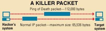 Gambar 10.1. Ilustrasi Ping of Death