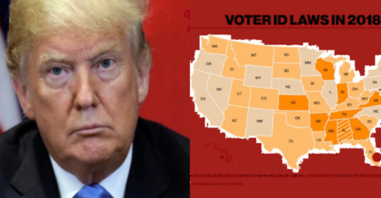 Would you support Trump if he signed a nationwide voter ID law?