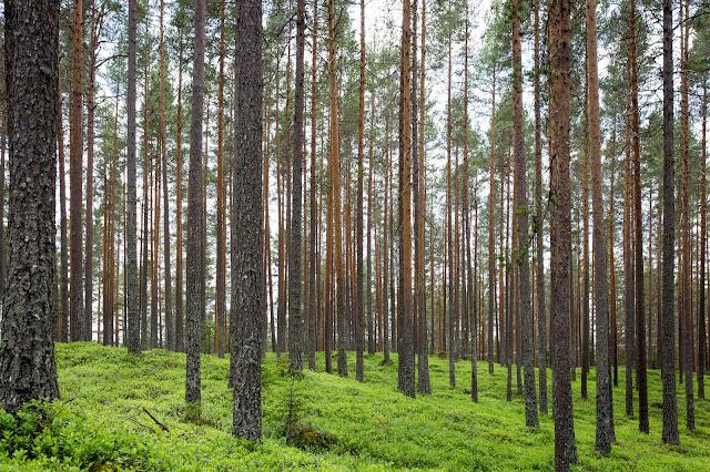 proper material list for natural farming
